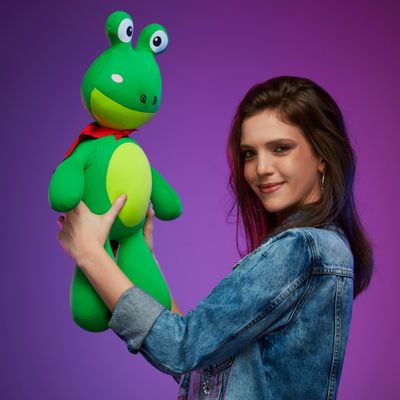 Almofada-Bichinho-Sapo-Mr-Frog